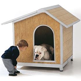 Kutyaházak és ketrecek